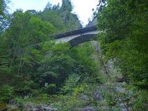 Alpine Creek que cae abajo la roca Fotografía de archivo