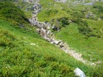 Alpine Creek que cae abajo la roca Fotos de archivo