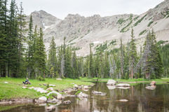 Alpine Creek Stock Images