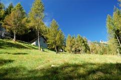 Alpine Dorflandschaft des Sommers Stockbilder