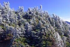 Alpine Einstellung in den Adirondack-Bergen, Staat New York Stockfoto