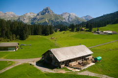 Alpine farm Stock Images