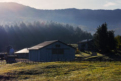 Alpine farm Stock Image