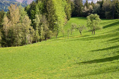 Alpine farm land Stock Photography