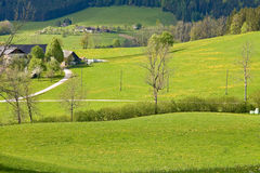 Alpine farm land Stock Photos
