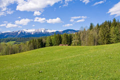 Alpine farm land Royalty Free Stock Photo