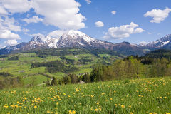 Alpine farm land Royalty Free Stock Photography