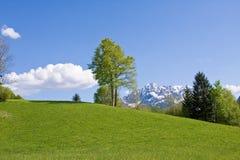 Alpine farm land Stock Image