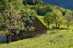 Alpine farm land Royalty Free Stock Images