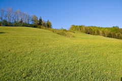 Alpine farm land stock photo