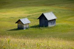 Alpine Field Royalty Free Stock Image