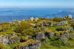 Stunning view from mount wellington Tasmania. Alpine flora and view from mount wellington Tasmania Royalty Free Stock Photos