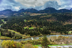 Alpine forest and river Stock Photos