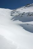 Alpine fresh snow. Fresh snow in the Alps (Switzerland Royalty Free Stock Photography