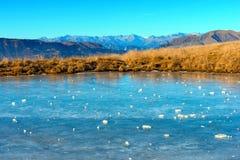 Alpine Frozen Pond - Lessinia Italy Stock Images