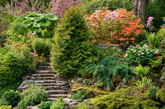 Alpine garden Royalty Free Stock Images
