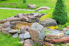 Alpine garden with green grass Stock Photos