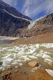Alpine Glacier and Ice Lake in Summer Royalty Free Stock Images