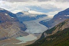 Alpine Glacier and its Valley. The Saskatchewan Glacier and its valley in the Jasper National Park in Alberta, Canada royalty free stock photos