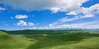 Alpine Grassland Scenery Stock Images