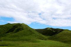 The Alpine Grassland scenery on the Qinghai Tibet Plateau Royalty Free Stock Photo