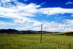 The Alpine Grassland scenery on the Qinghai Tibet Plateau Stock Photography