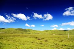 The Alpine Grassland scenery on the Qinghai Tibet Plateau. Located in Qinghai province , China stock image