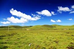The Alpine Grassland scenery on the Qinghai Tibet Plateau Stock Photos