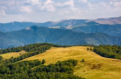 Alpine grassy meadow in autumnal Carpathians. Lovely landscape of TransCarpathia with beech forest on hills and gorgeous Svydovets mountain ridge in a distance Royalty Free Stock Photography