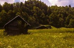 Alpine Hütten auf einem Gebiet von Wildflowers Stockfoto
