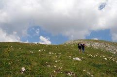 Alpine hikers Royalty Free Stock Photos
