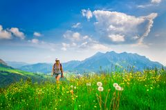 Alpine hiking lonely girl in a flowery meadow.  Stock Photos