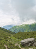 Alpine hiking route in green valley Royalty Free Stock Images