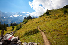 Alpine hiking trail through meadow. Hiking trail rising through meadows past a trail marker in the Alps Royalty Free Stock Photo