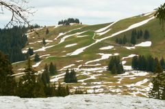 Alpine hill, trees and snow residue in spring. Alpine hill with trees and snow residue in spring in Switzerland Royalty Free Stock Photography