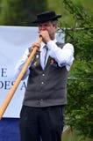 Alpine Horn Festival Stock Image