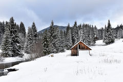 Alpine house covered with snow in the mountains Stock Photo