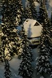 Alpine hut. In alps in middle of snowy chrismas pines in winter Royalty Free Stock Photos