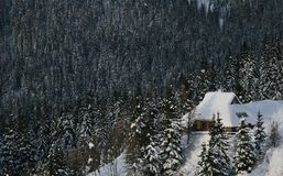 Alpine hut. In alps in middle of snowy chrismas pines in winter Royalty Free Stock Images
