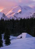 Alpine hut. In alps in middle of snowy chrismas pines in winter Royalty Free Stock Image