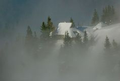 Alpine hut. Alpine cottage with trees and fog Stock Photos