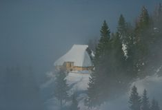 Alpine hut. Alpine cottage with trees and fog Stock Image