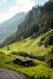 Alpine hut in autumn Stock Image