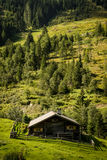 Alpine hut in autumn, portrait view Royalty Free Stock Photo