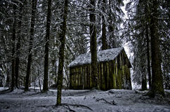 Alpine hut in the wood HDR. Small hut in a wood of Dolomites mountain region in winter period Stock Images