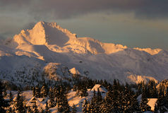 Alpine huts. Alpine hut in alps in middle of snowy chrismas pines in winter Royalty Free Stock Images
