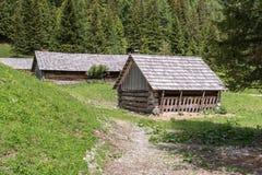 Alpine huts in the Natur park Riedingtal Zederhaus, Austria.  royalty free stock photo