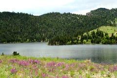 Alpine Lake Royalty Free Stock Photos