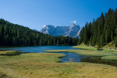 Alpine Lake. A stream flowing into an alpine lake Stock Photo