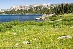 Alpine Lake. Along the Beartooth Highway in Wyoming Royalty Free Stock Image